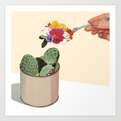 succulent-1zq-prints.jpg